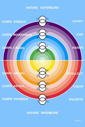 The system of the six bodies